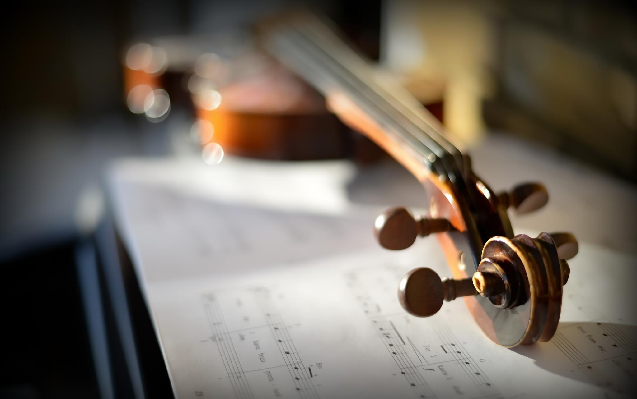 картинки скрипки на фоне нот стоимость услуг более