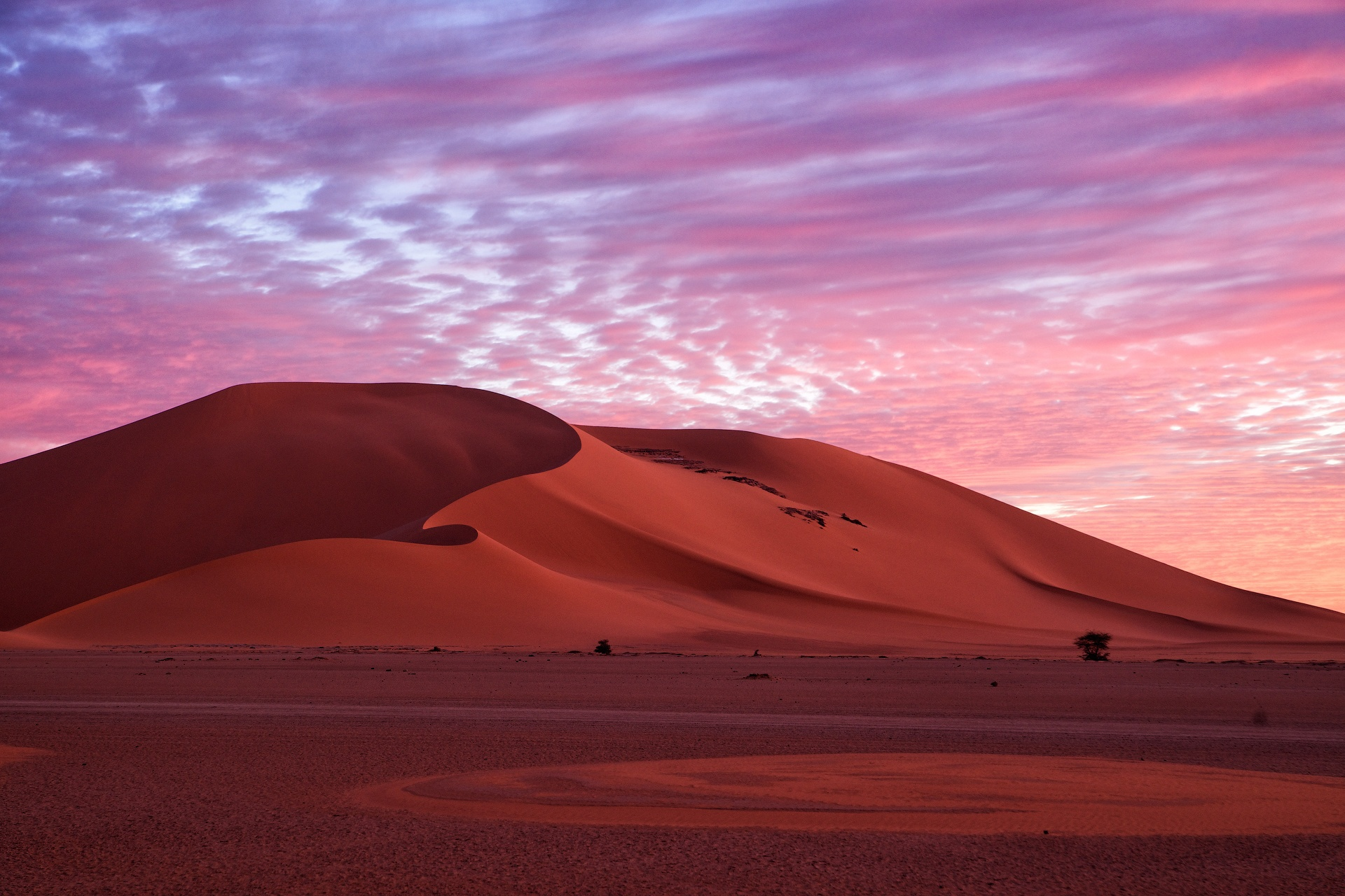 фото в пустыне очень яркие