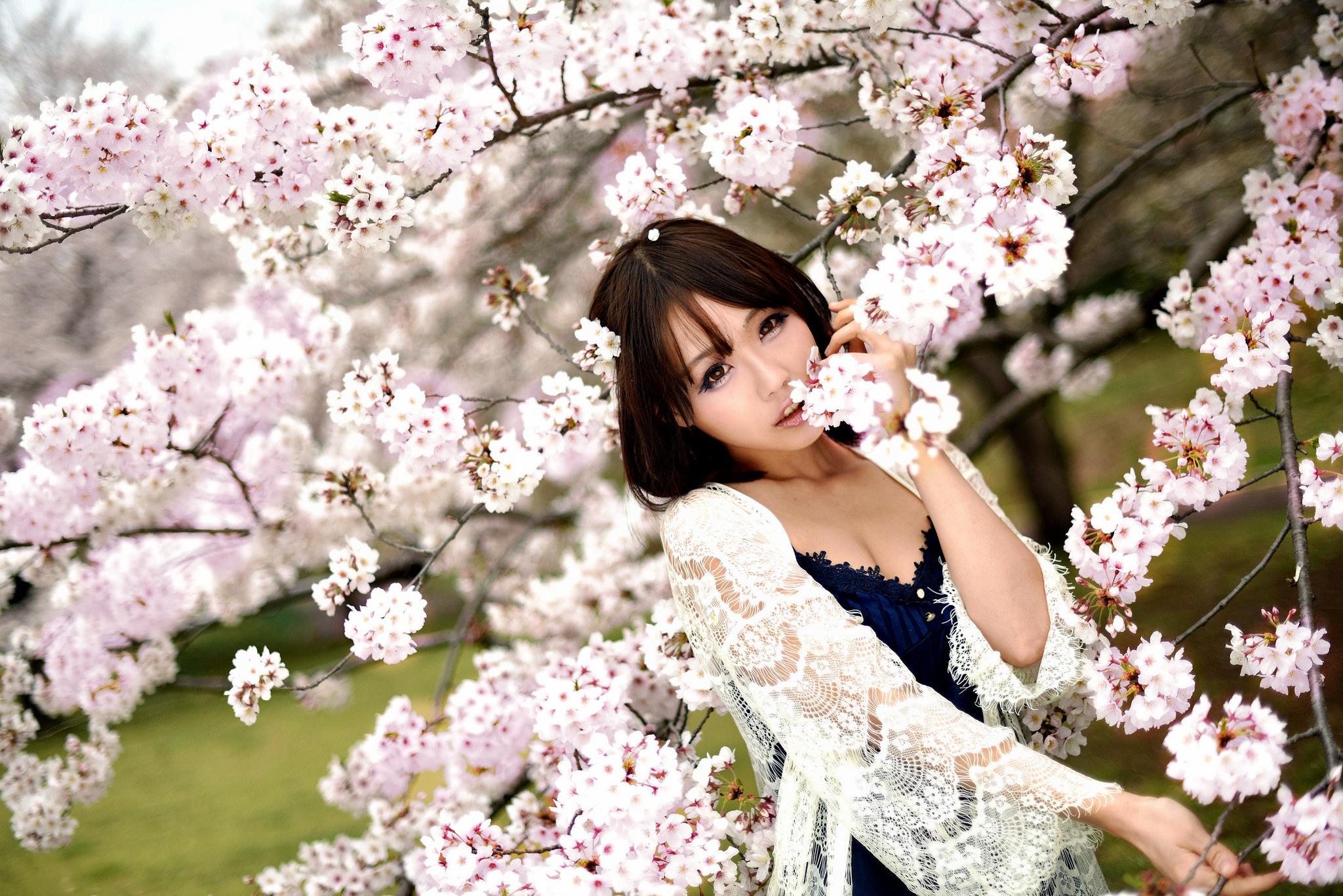Картинки цветущей сакуры на аву