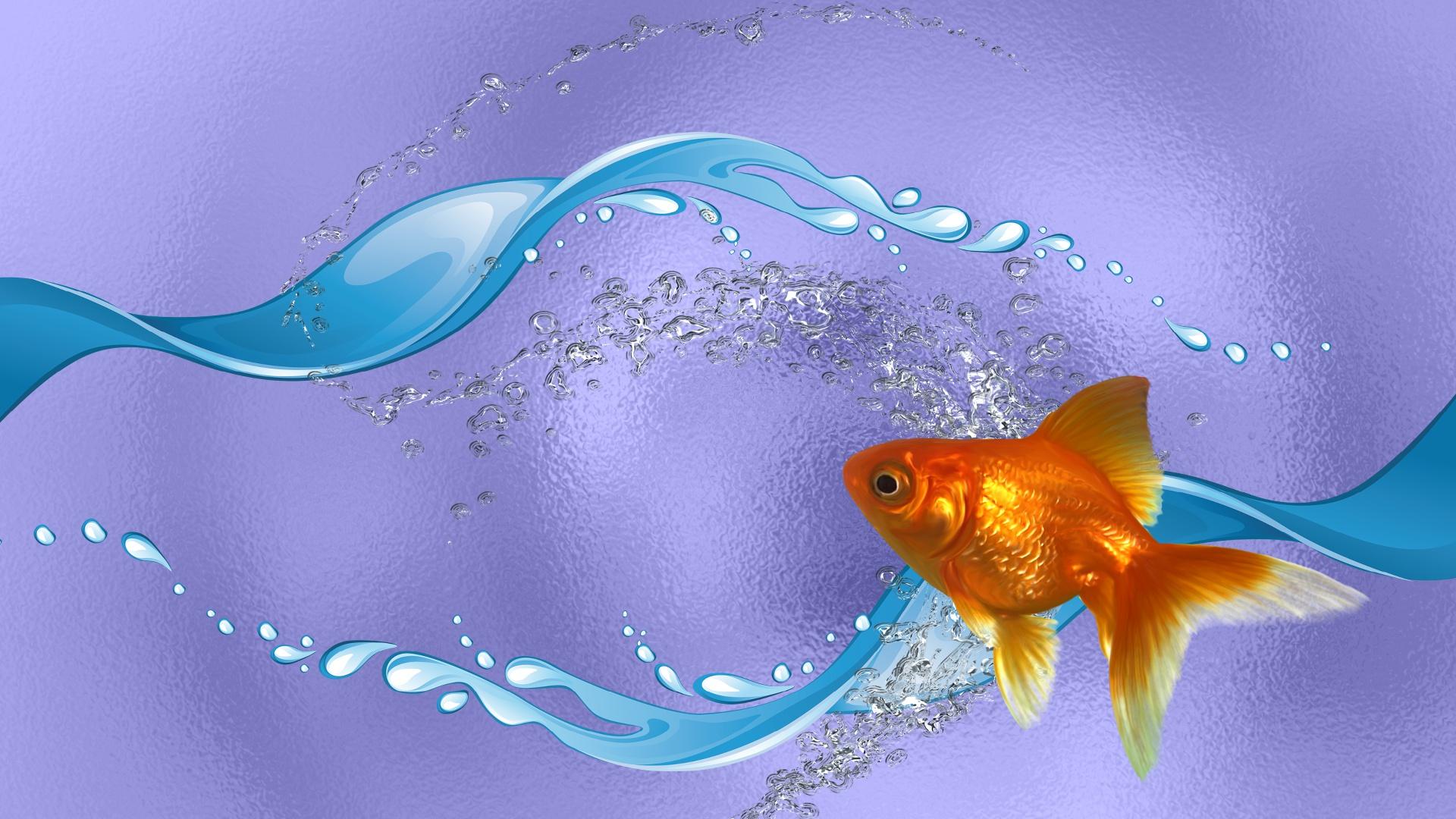 рыбы картинки на обложку выложила
