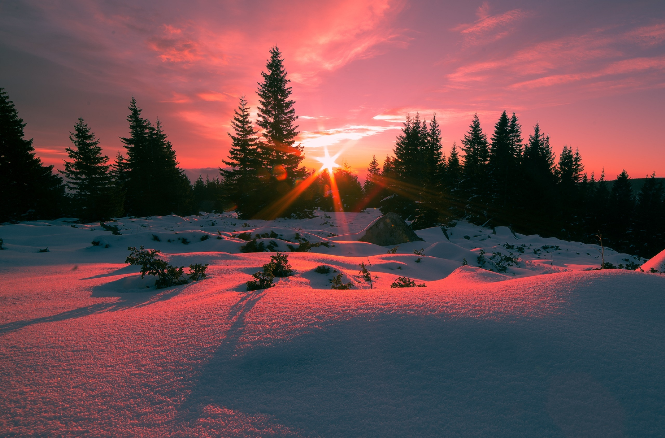 Картинки снег снежинки снегопад организации рубрики