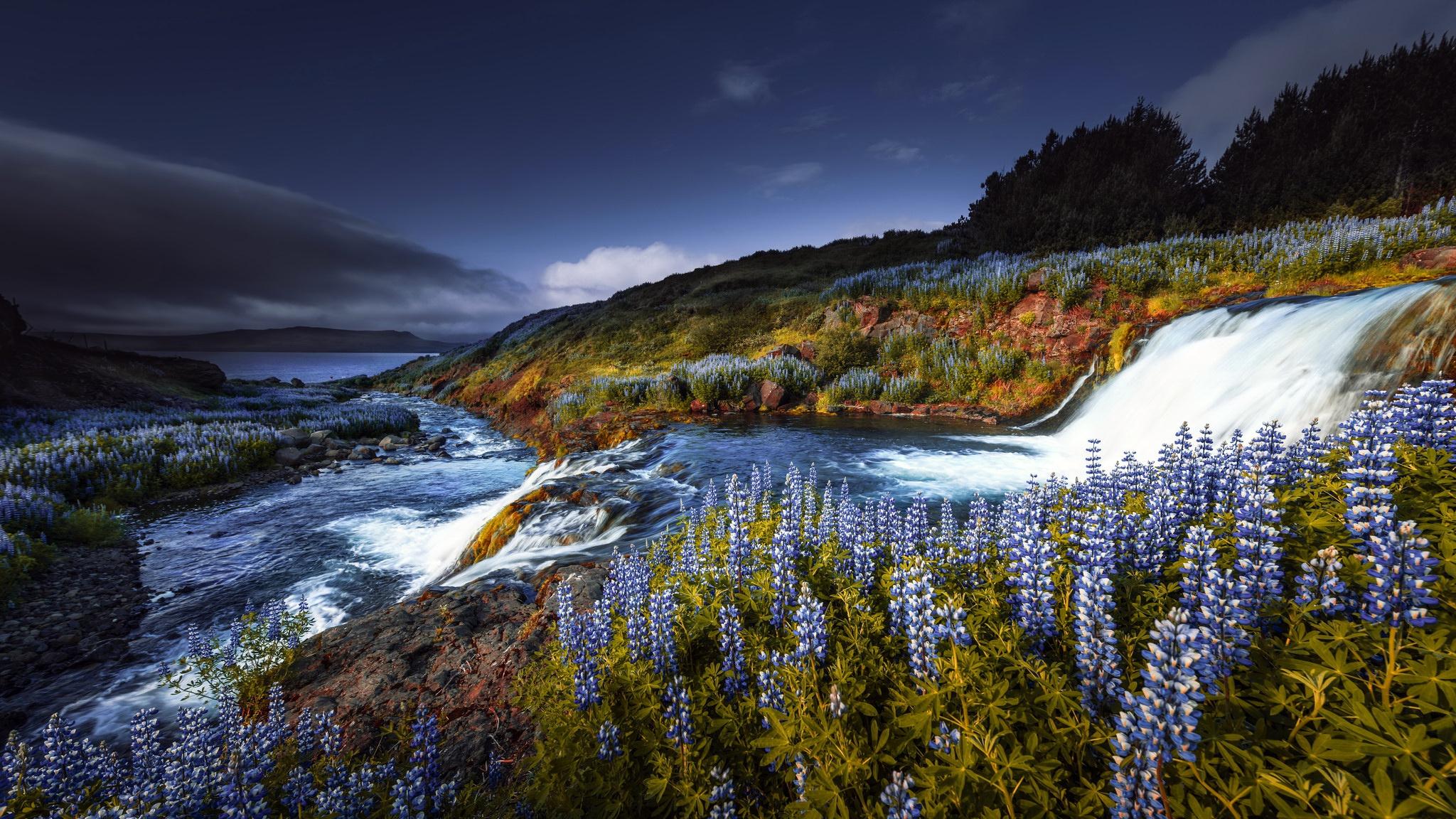 Картинки поляна с рекой цветами водопадом