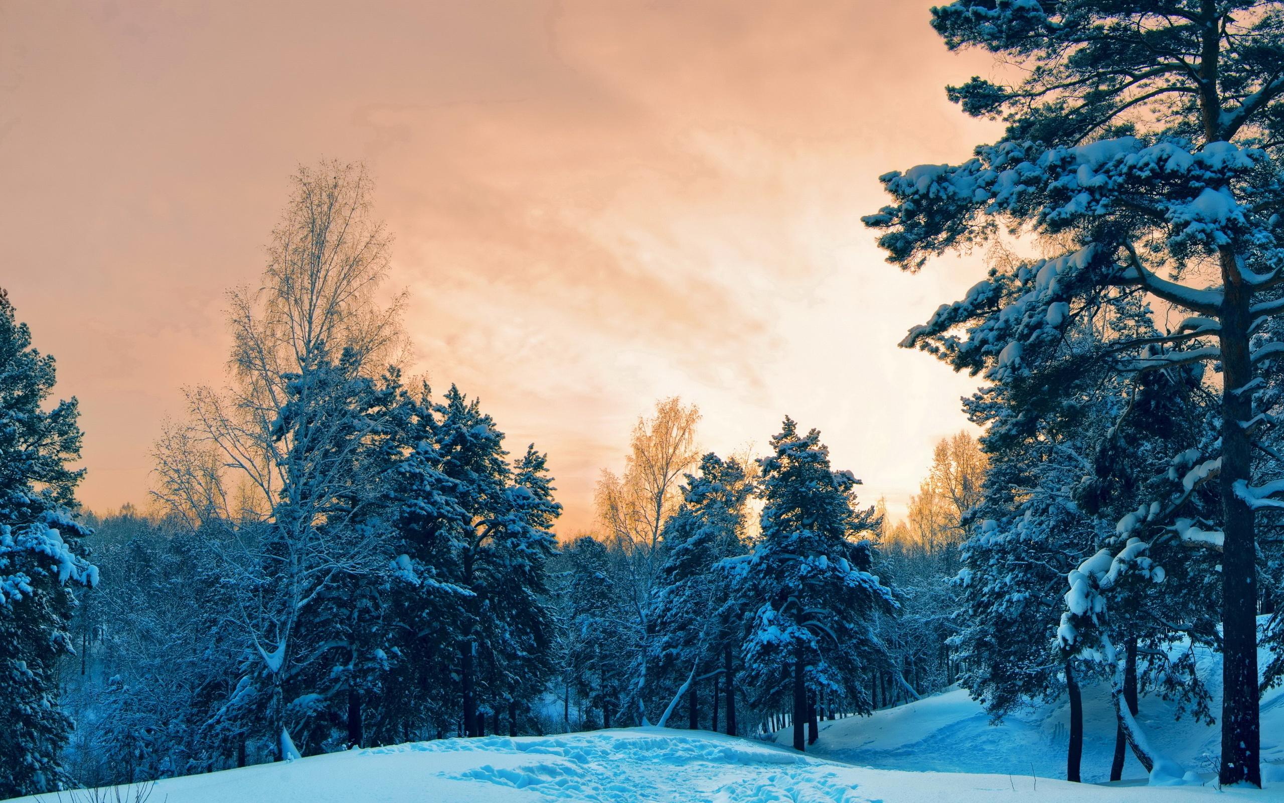 зимние картинки высокое качество тому