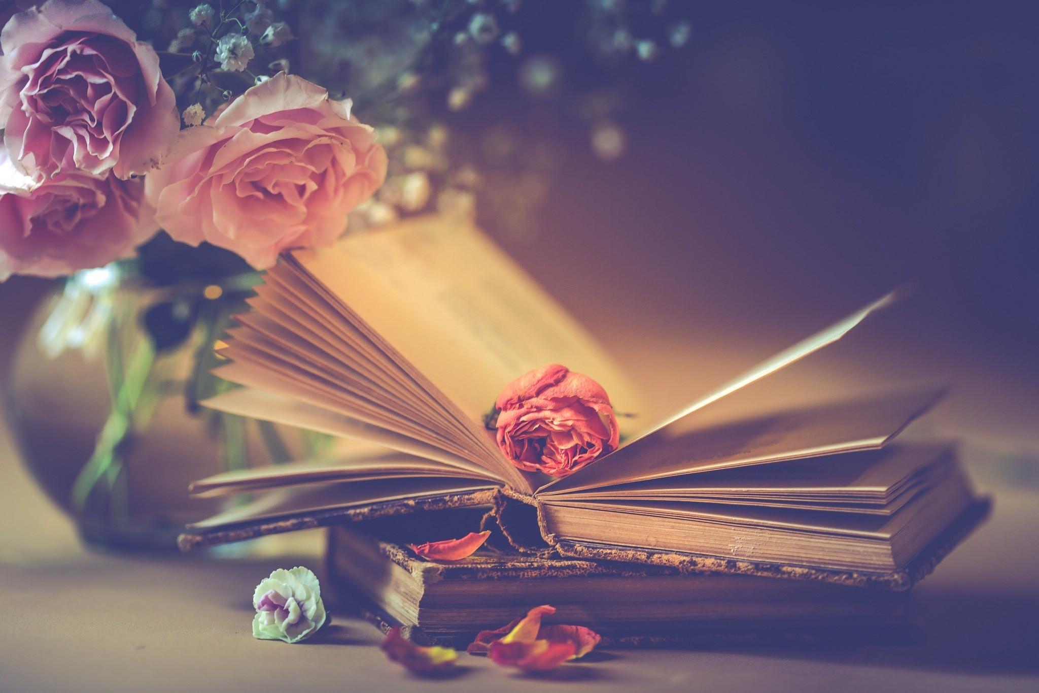 Обои книги, стиль, винтаж, цветы, кувшины. Разное foto 13