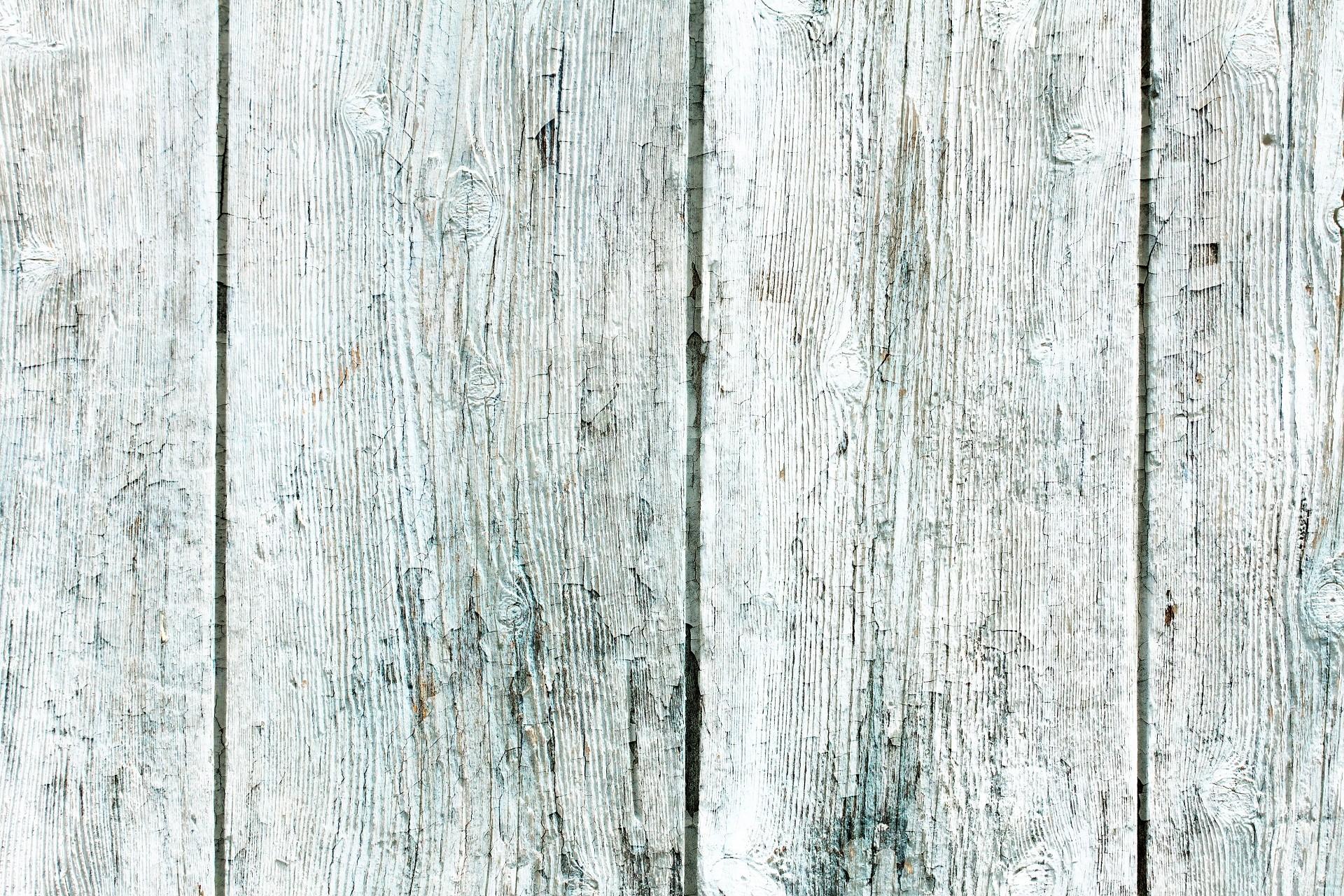 картинки на рабочий стол белое дерево комментариях видео подписчики