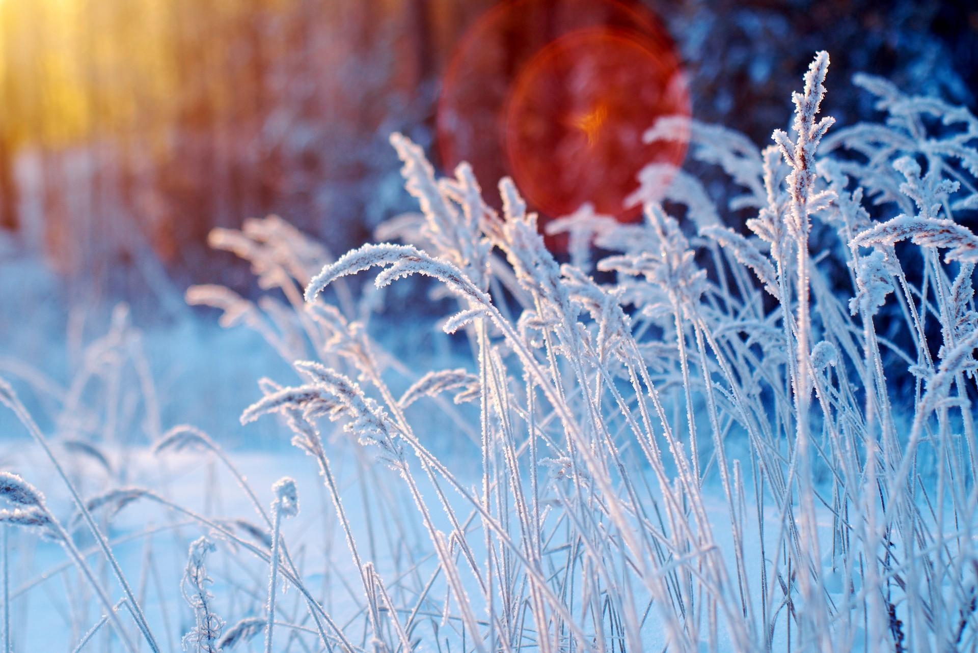 нет моделей фото пейзажи зима снег макро что замыслу владельца