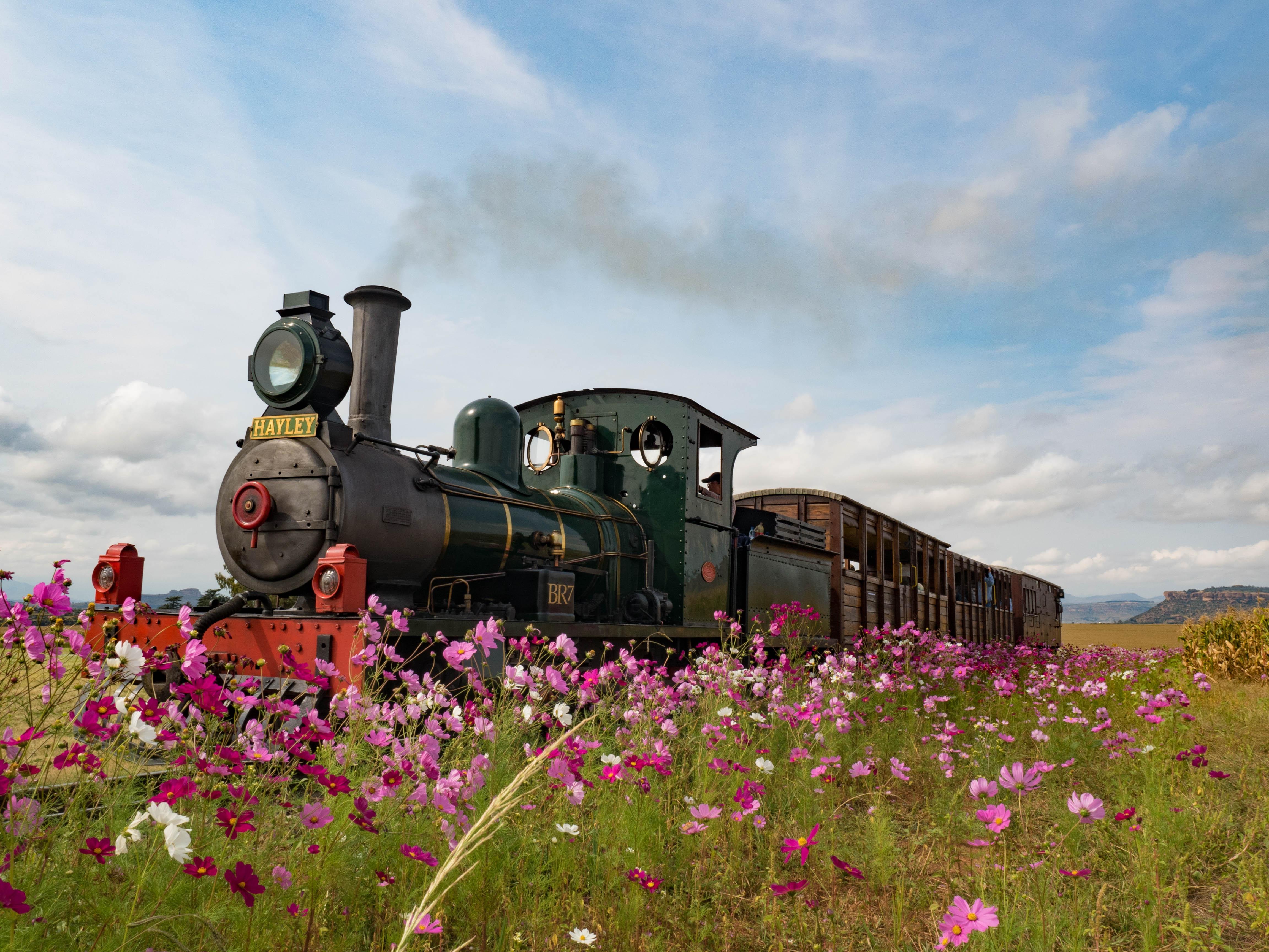 поезд весной в картинках для финальная версия, которой