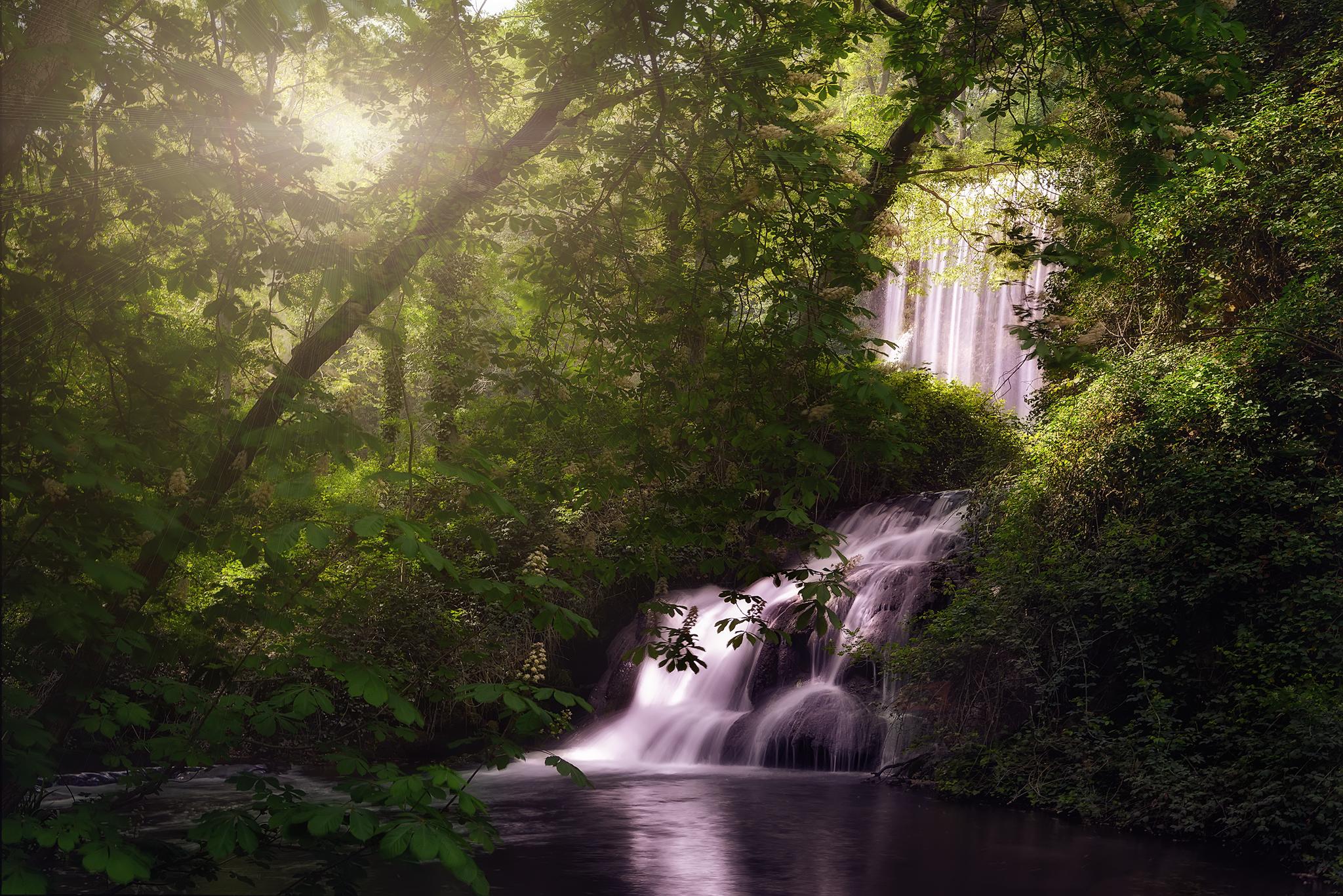 угрозы картинки леса с водопадом доступны сувенирных
