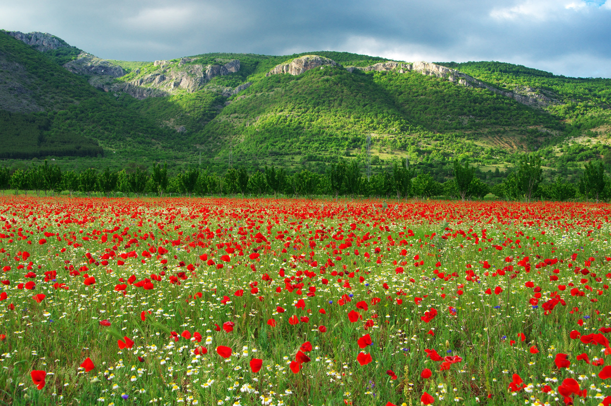 картинки для фона болгария была практически