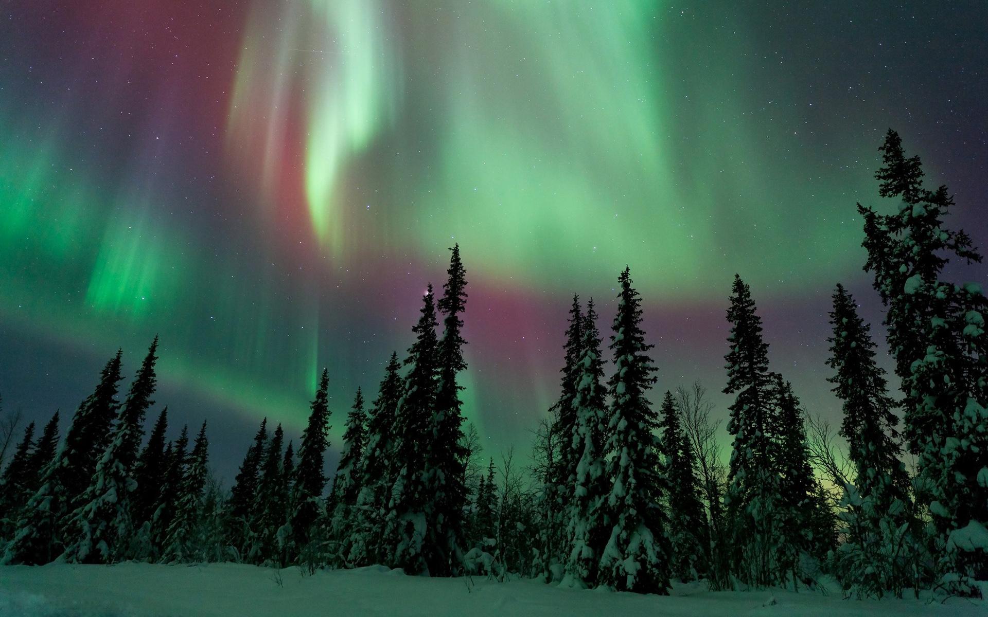 картинки северного сияния зимой жизнь ещё