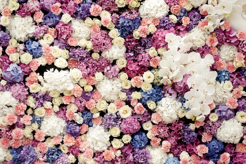 картинки цветочные картинки крой удобный дизайн