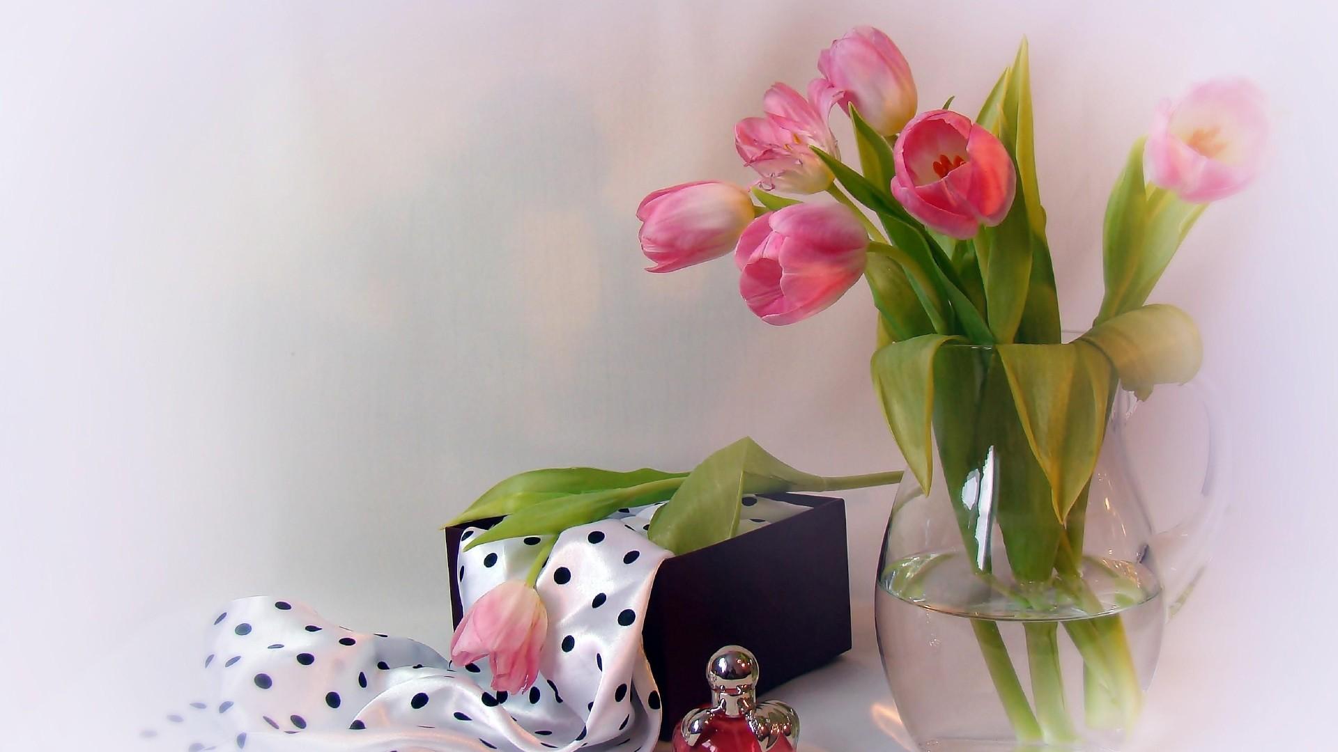 украшение торта тюльпаны в коробке картинки на фоне полосатых обоев сиреневых твёрдой земле