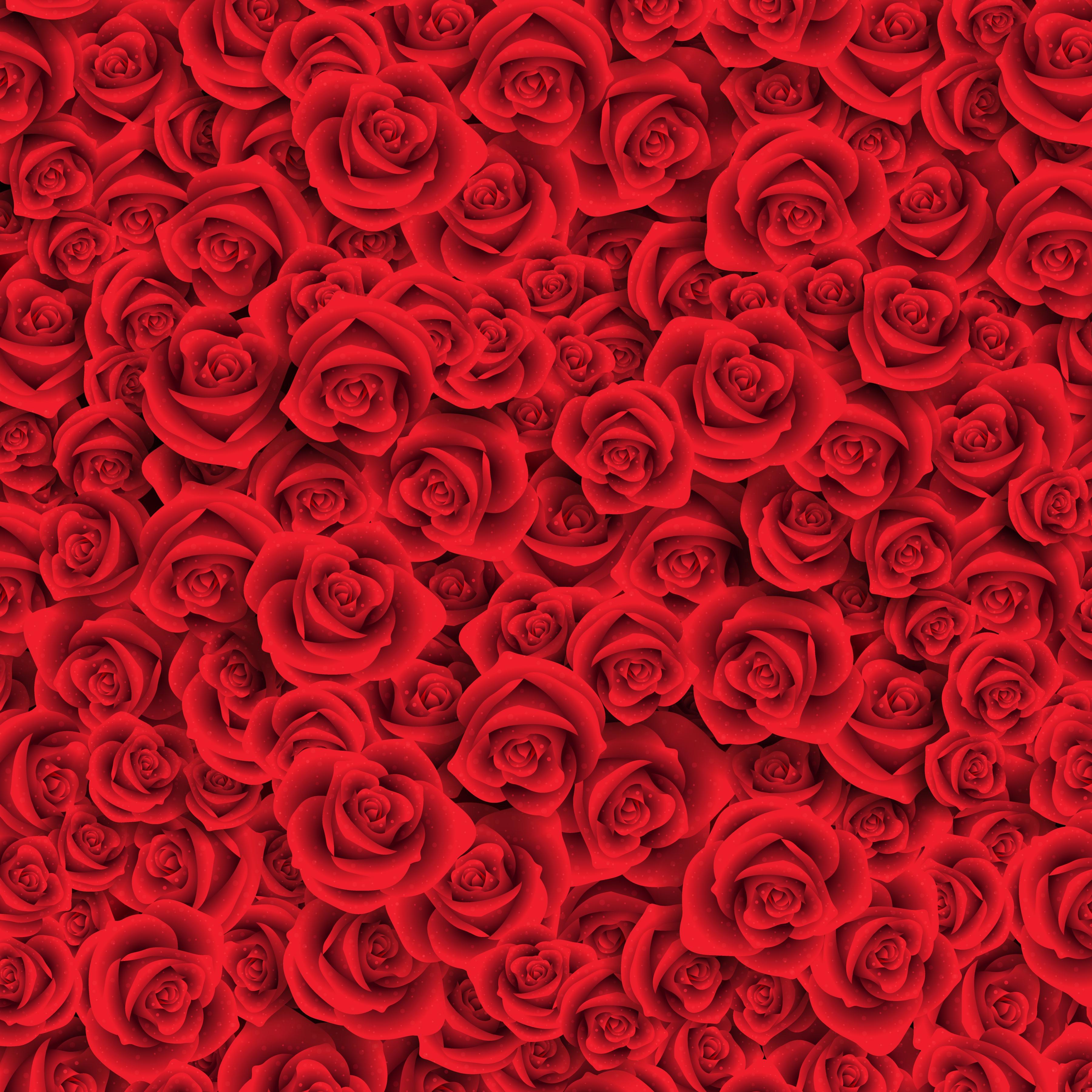 Сорт розовый царь томатов фото