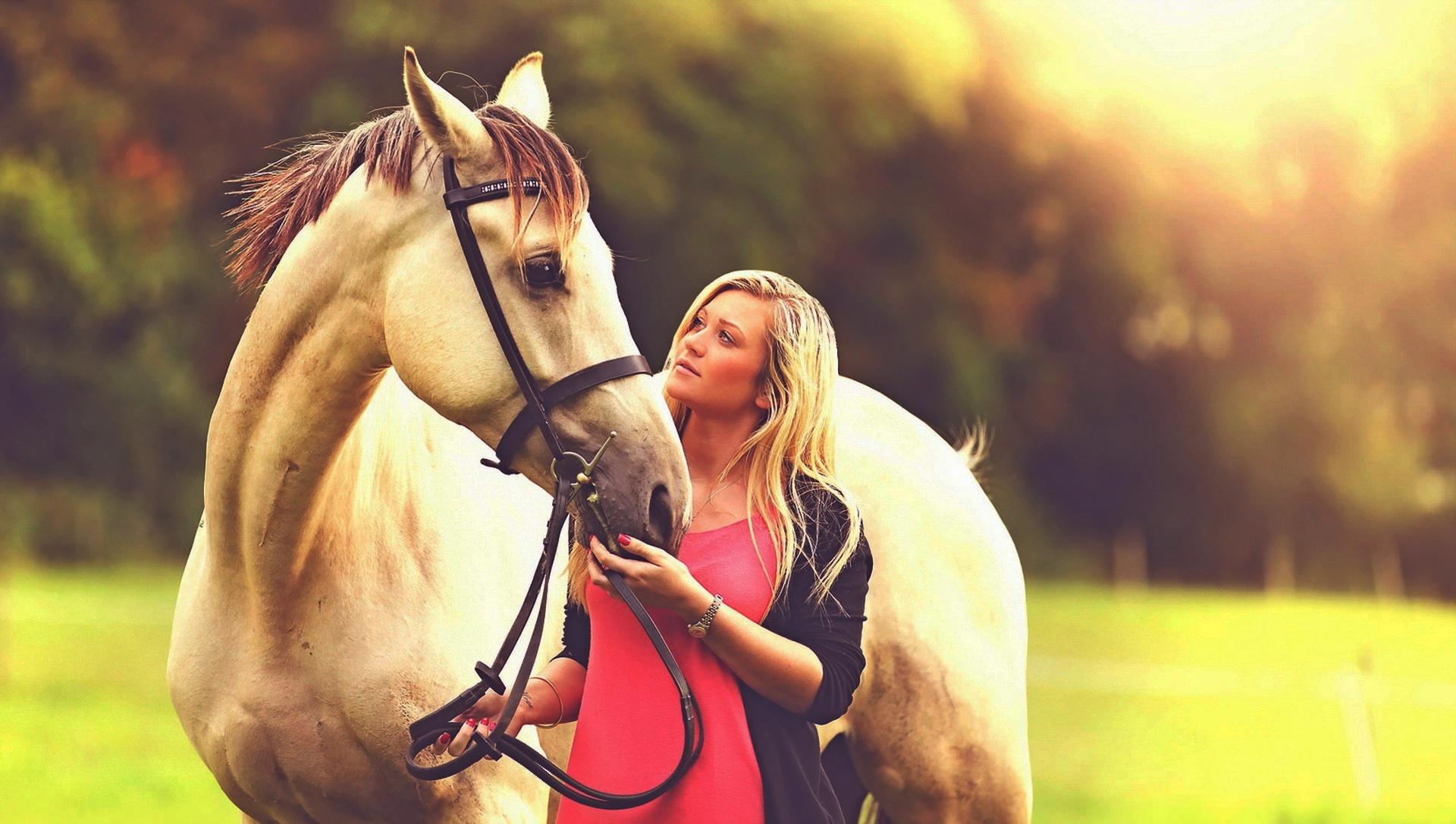 недостаток классная картинка с лошадью панели