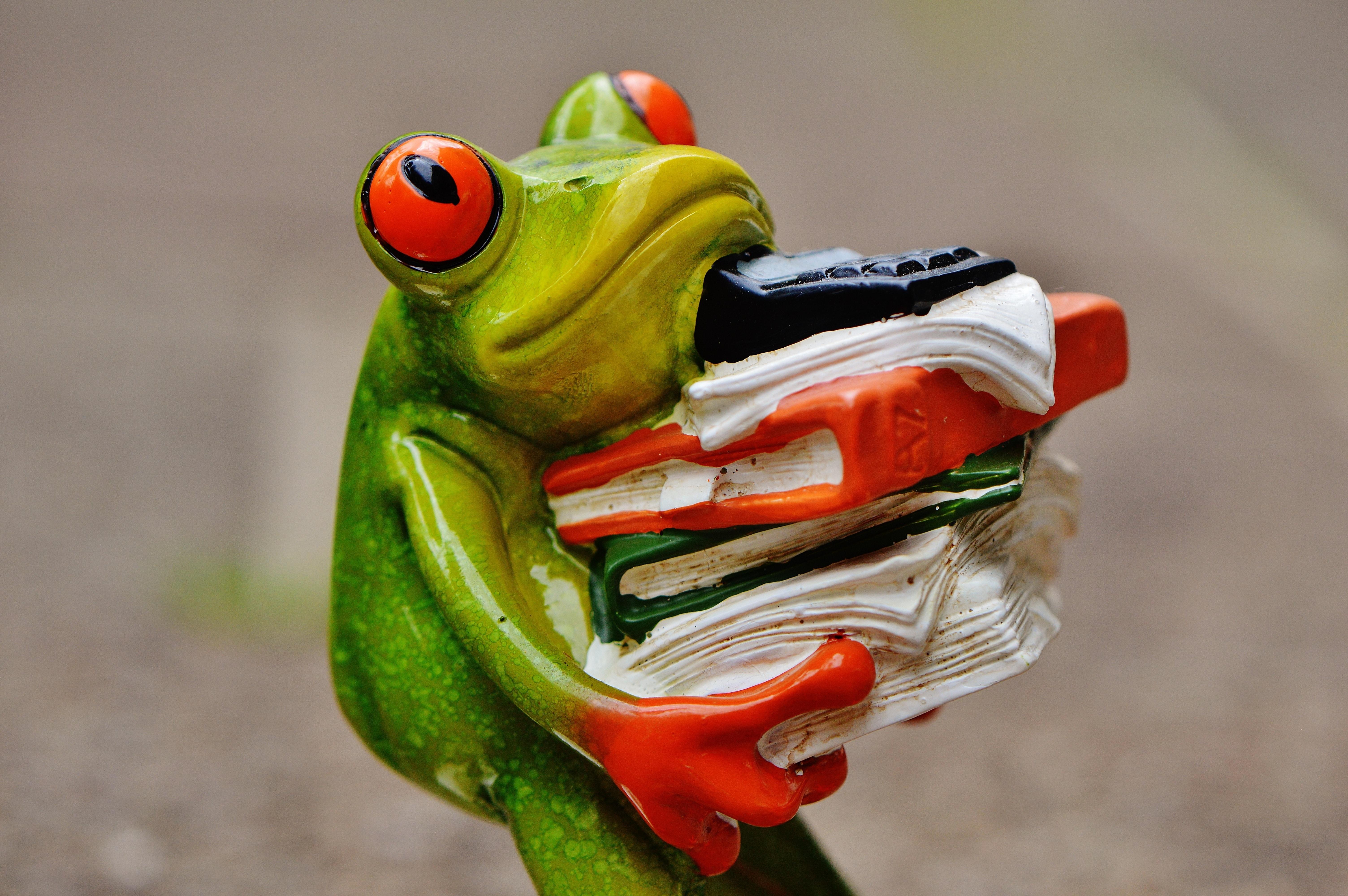 Бумаги сделать, картинки смешные лягушка