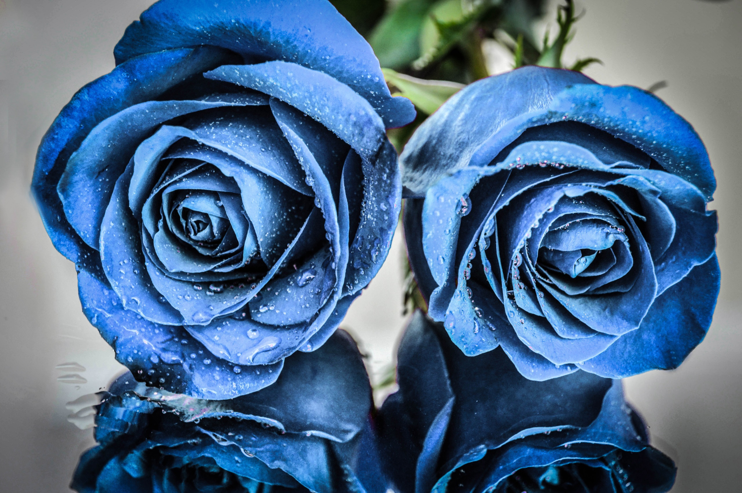 красно серо синие картинки желаю