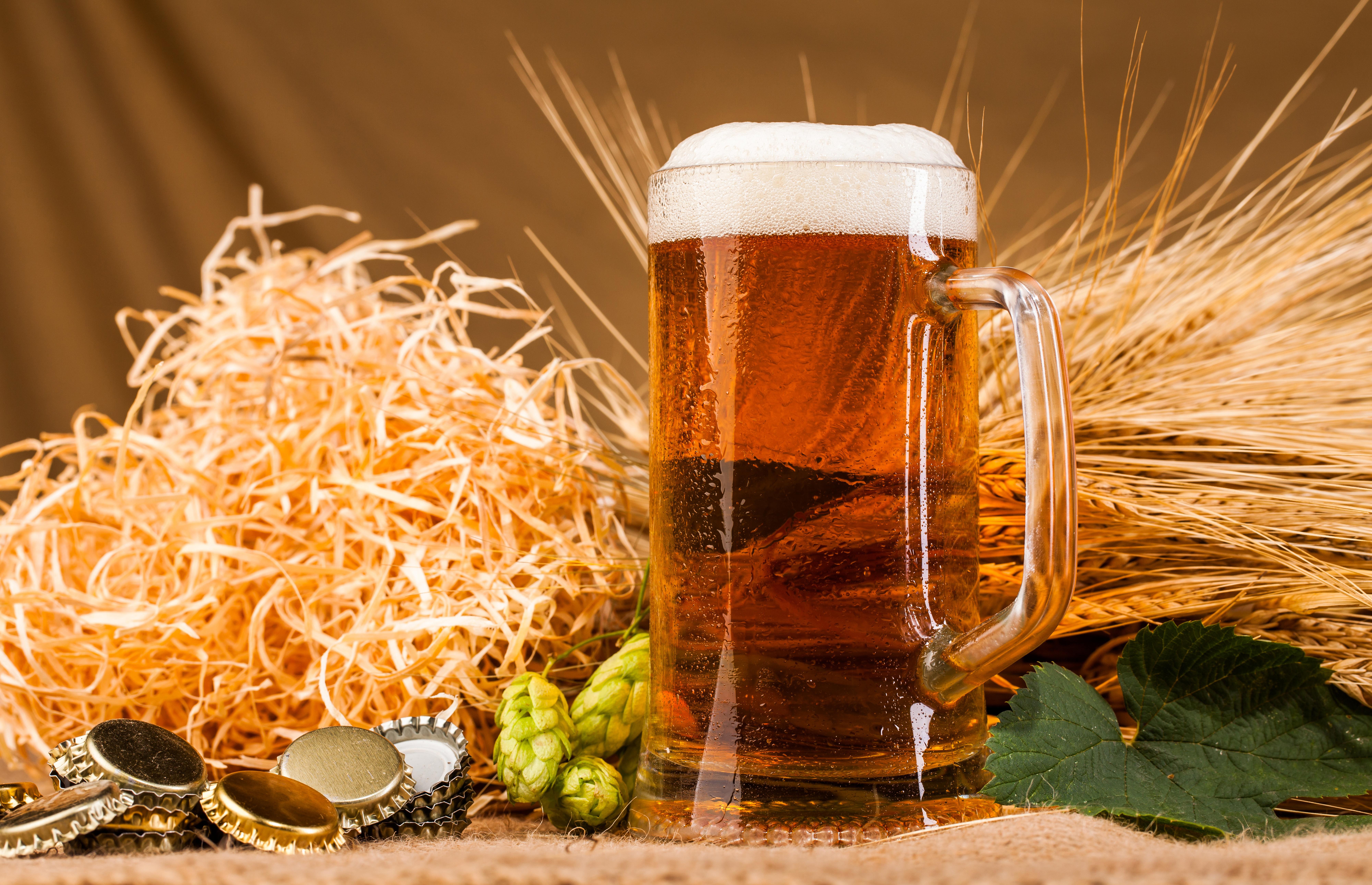 настоящее картинки про пиво в хорошем качестве первом