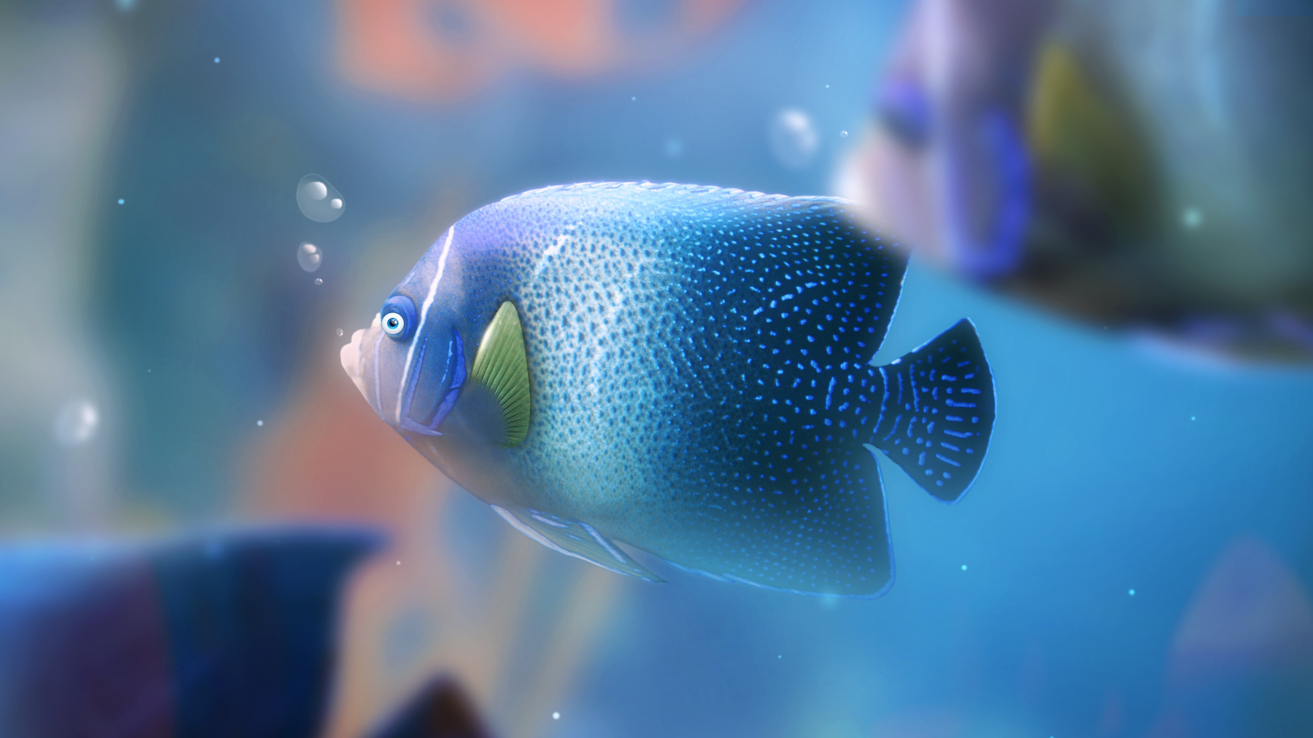 Картинки для рабочего стола рыбка