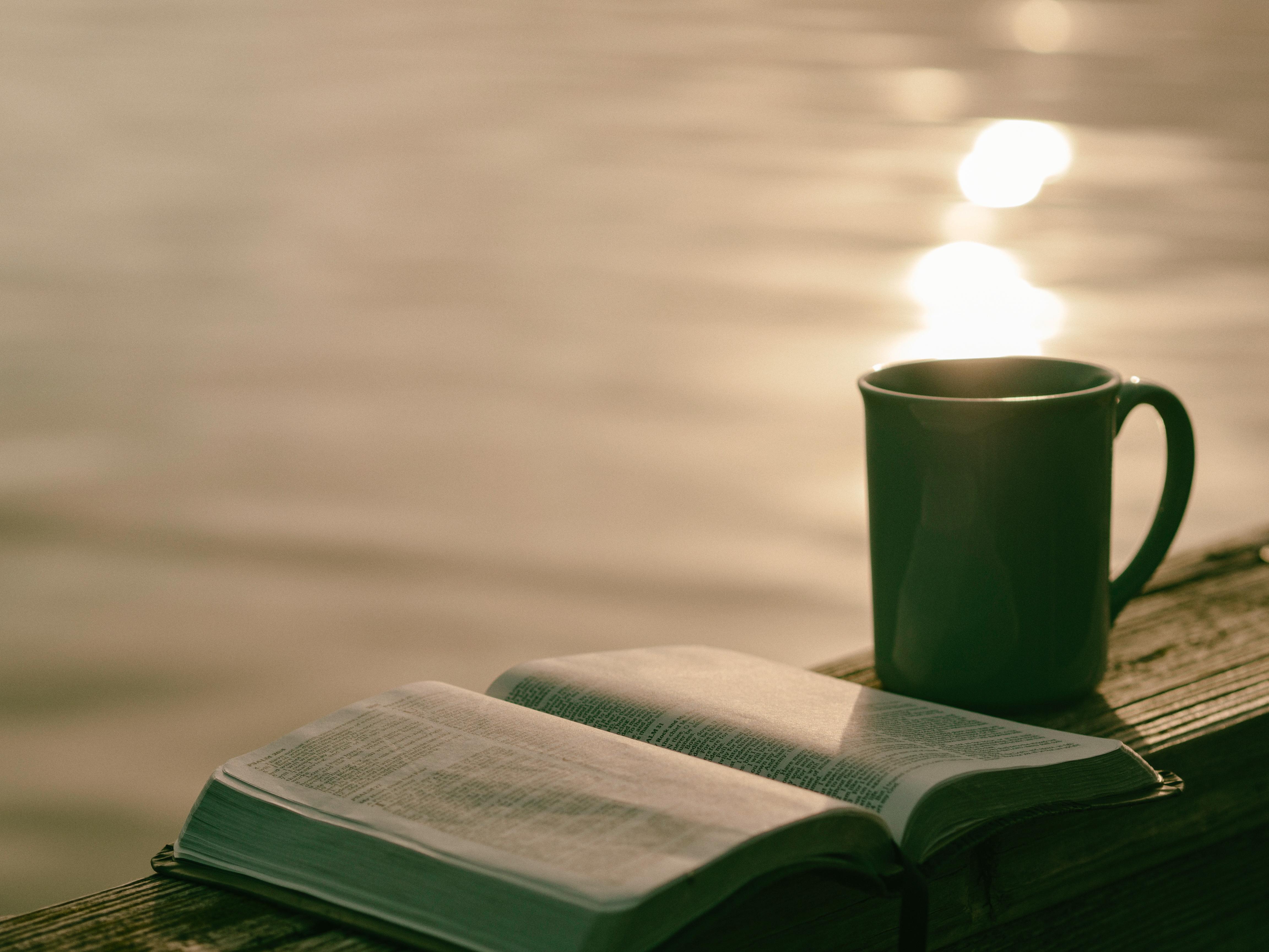 Обои book, cup, книга, tea, чай. Разное foto 11