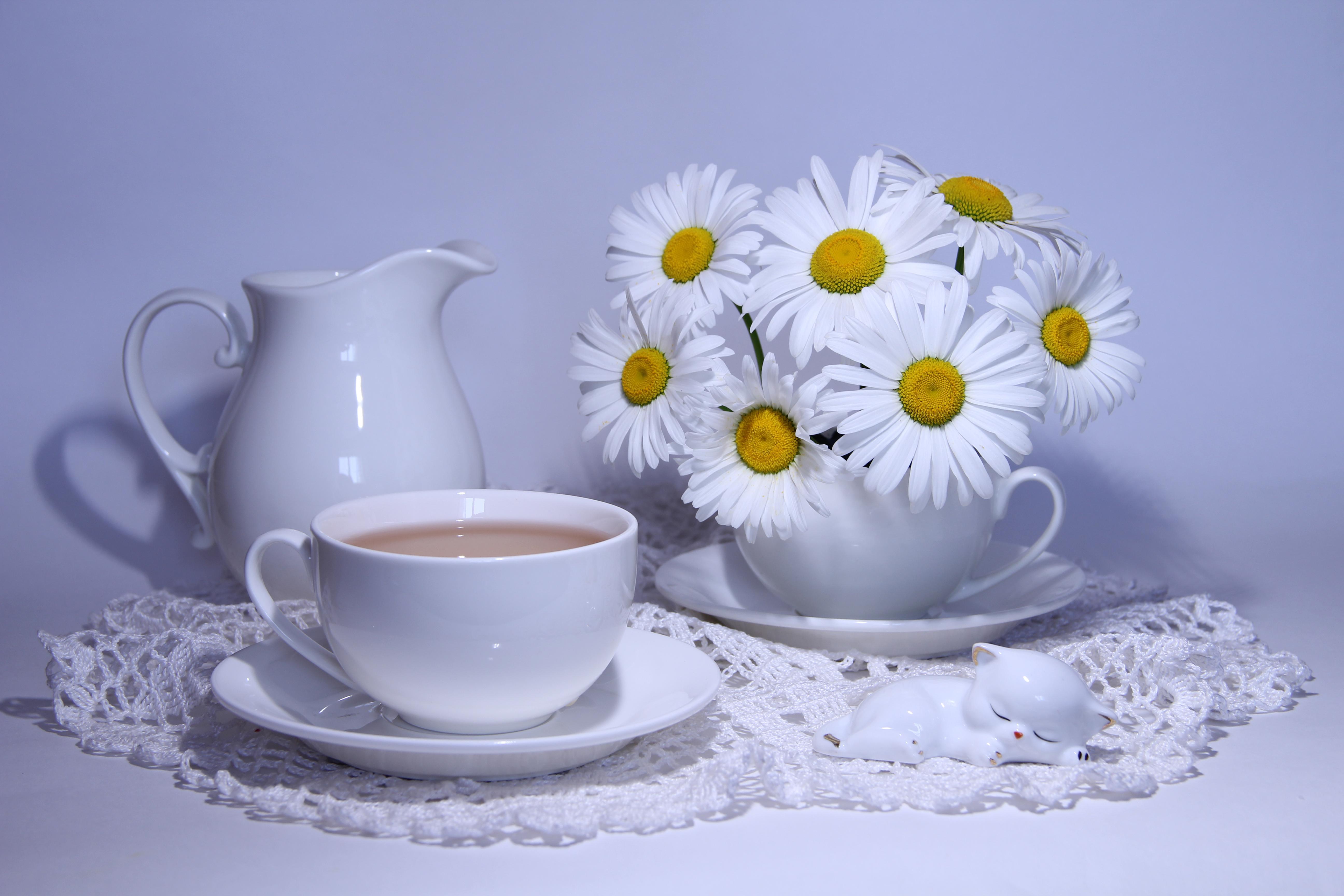 Доброе утро с ромашками картинки красивые необычные
