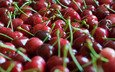 the focus of the camera, red, cherry, berries, a lot