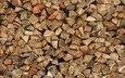 wood, palenica
