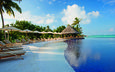 beach, palm trees, tropics, the maldives