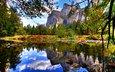 небо, облака, вода, озеро, горы, лес, осень, ель, отражение неба
