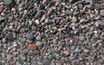 stones, shore, sea, stone