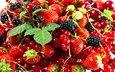 вкус, клубника, ягоды, земляника, ежевика, смородина, виктория
