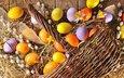 весна, пасха, яйца, праздник, дерева, верба, глазунья, весенние, зеленые пасхальные, довольная