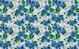flowers, blue, pattern