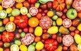 овощи, помидоры, томаты