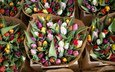 цветы, красочные, тюльпаны, alice achterhof