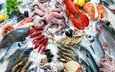 осьминог, лёд, лимон, рыба, морепродукты, креветки, петрушка, раки, омар