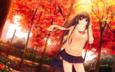 деревья, лес, листья, девушка, фон, взгляд, осень, солнечные лучи, длинные волосы