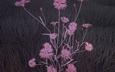 трава, природа, цветок, розовый, cgi