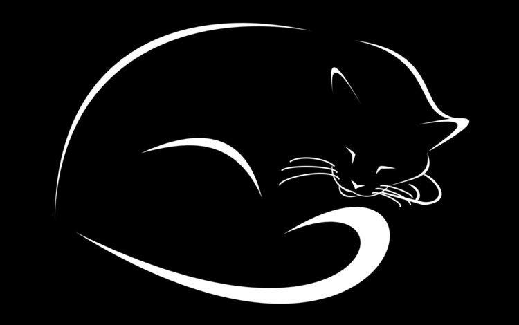 рисунок, кошка, черный фон, figure, cat, black background