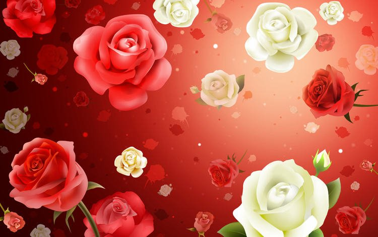 flowers, wallpaper, background, roses