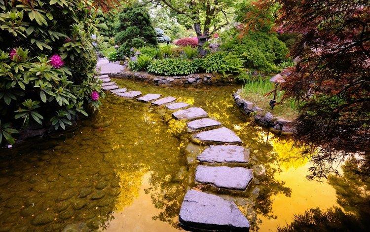 river, stones, path