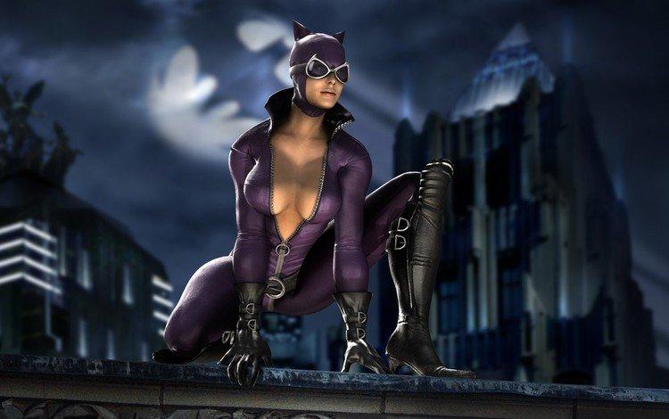 cat, hero, batman