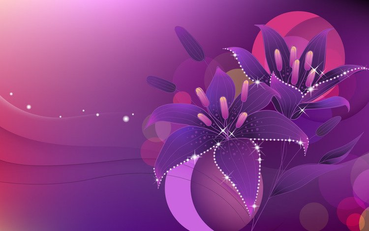 flowers, vector, lights, lily, circles