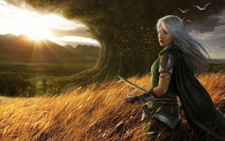 the sun, tree, sword, fantasy
