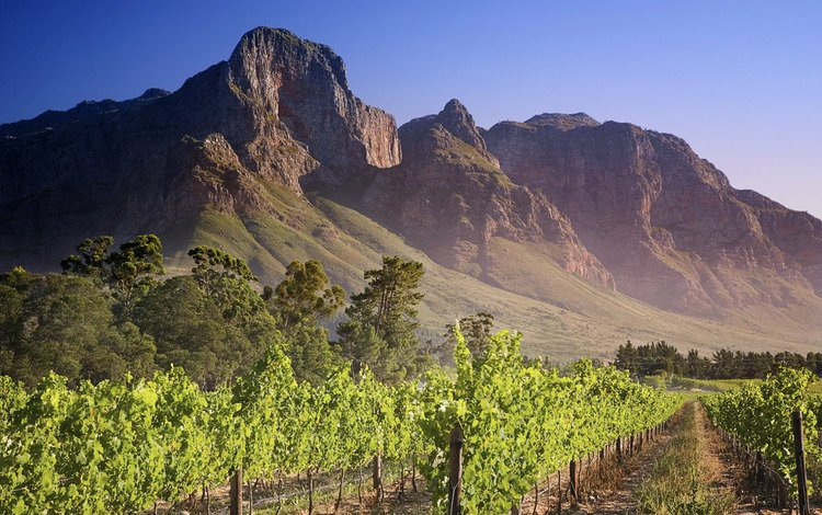 горы, зелень, африка, mountains, greens, africa