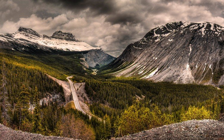 дорога, горы, лес, road, mountains, forest
