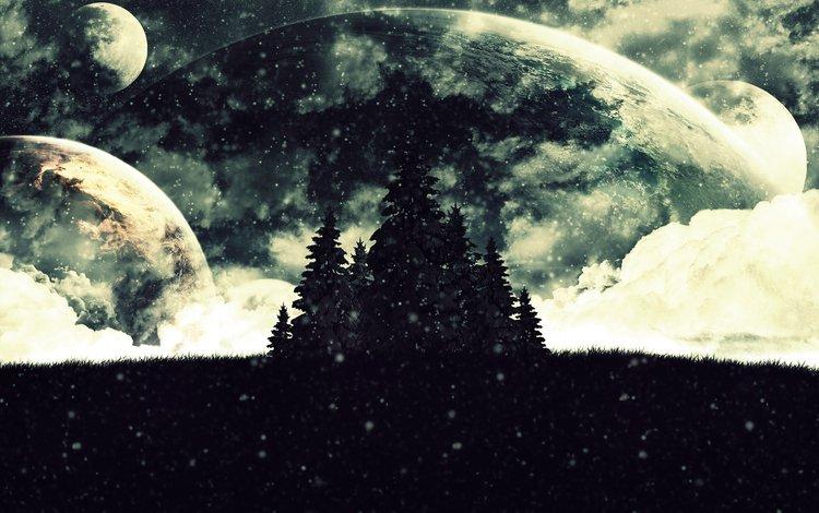 мрак, планеты, елки, the darkness, planet, tree