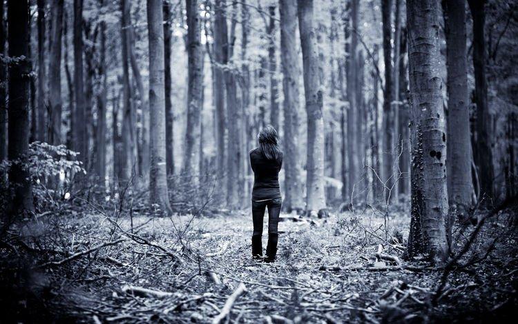 девочки, одна, по, лесу, гуляет, girls, one, at, forest, walks