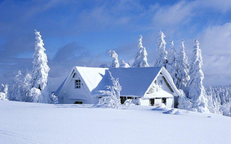 небо, снег, домик, ели, the sky, snow, house, ate
