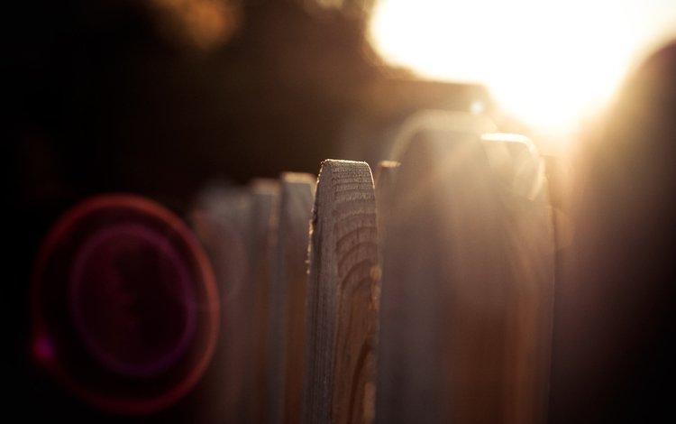 солнце, макро, лучи, забор, деревянный, the sun, macro, rays, the fence, wooden