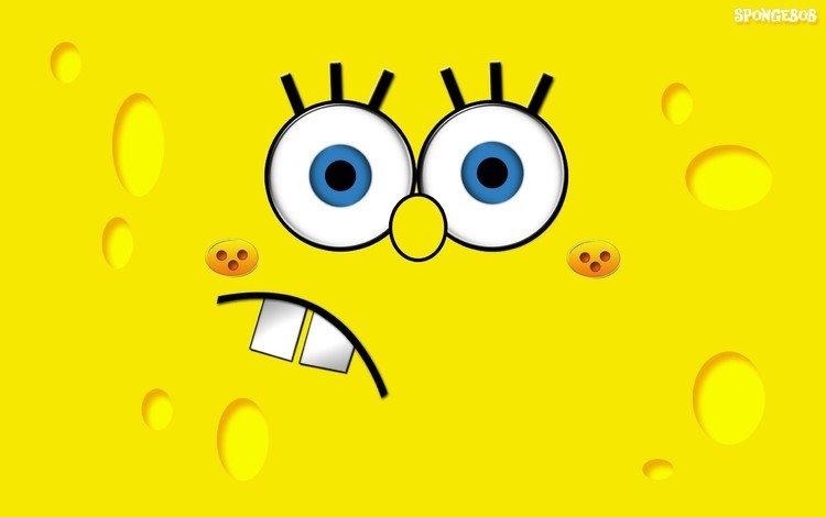 желтый, рожа, губка, боб, губка боб и патрик, yellow, mug, sponge, bob, spongebob and patrick